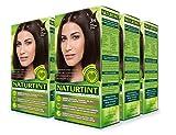 hair color chestnut - Naturtint Permanent Hair Color - 3N Dark Chestnut Brown, 5.28 fl oz (6-pack)