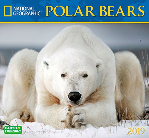 National Geographic Polar Bears 2019 Wall (Bear Calendar)