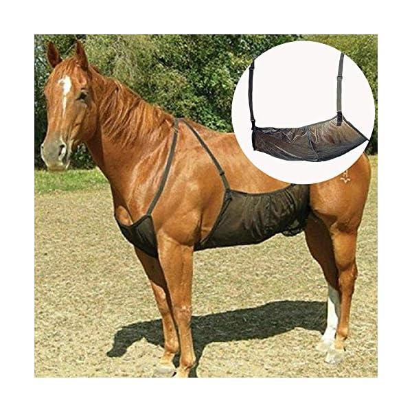 HilMe Cavallo Fly Tappeti, Cavallo Addome Coperte Elasticità Anti-zanzara Rete per Outdoor, Regolabile Flysheet Rete… 1 spesavip