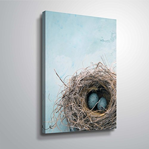 ArtWall 'Blue Nest' Gallery Wrapped Canvas Art by Elena Ray, 16 by 24-Inch (Egg Art Wall Little)