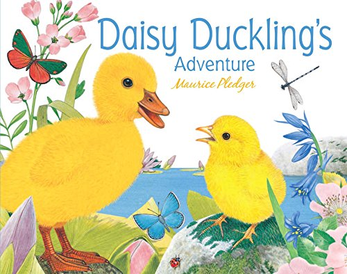 Daisy Duckling's Adventure (Friendship Tales)