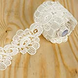 Efavormart Peacock Inspired Clear Sequined Crocheted Heavy Lace Ribbon Trim 3.15'' x 5yards - White