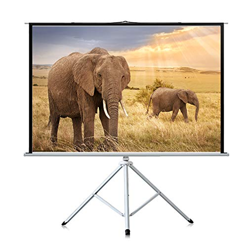 Most Popular Video Projection Screens