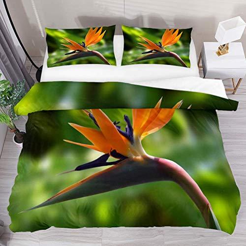 Bedding Duvet Cover Set Birds of Paradise Flower View Printed Comforter Set with 2 Pillow Shams 3 Piece Soft Hypoallergenic Zipper- Queen