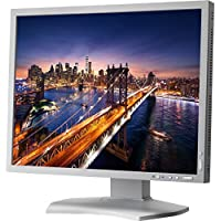 NEC P212 MultiSync 21.3 Screen LED-Lit Monitor