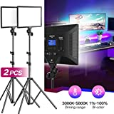 Bi-Color LED Video Light Stand Lighting Kit 2 Pack 15.4'' Large Panel 3000K-5800K 45W 4800LM Dimmable 1-100% Brightness Soft Light for YouTube Game Video Shooting Live Stream Photography Lighting