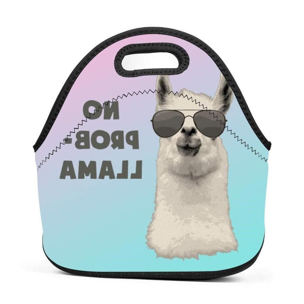 MOSDELU ランチバッグ 断熱ランチトート ランチボックス ハンドバッグ アウトドア 旅行 ピクニック キャリーケース 男の子 女の子 問題なし   B07MMZLQ3S
