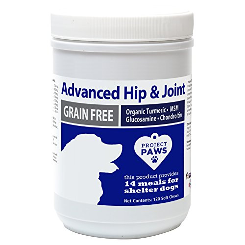 Project Paws Hip and Joint Advanced Supplement for Dogs - Glucosamine for Dogs, MSM, Chondroitin and Organic Turmeric - 120 (Hip Joint Soft Chews)