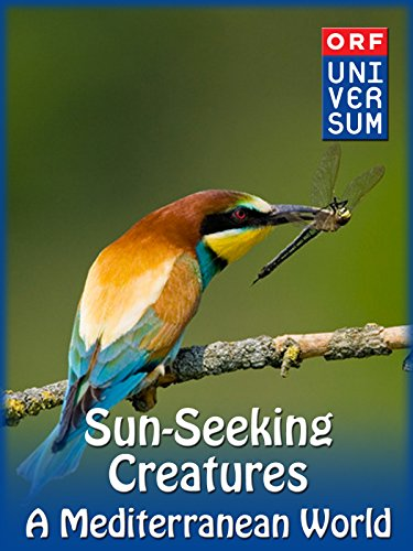 - Sun-Seeking Creatures - A Mediterranean World