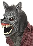California Costumes Men's Gray Lycan Vampire Werewolf Full Fur Costume