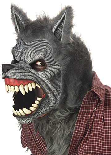 California Costumes Men's Gray Lycan Vampire Werewolf Full Fur Costume - http://coolthings.us