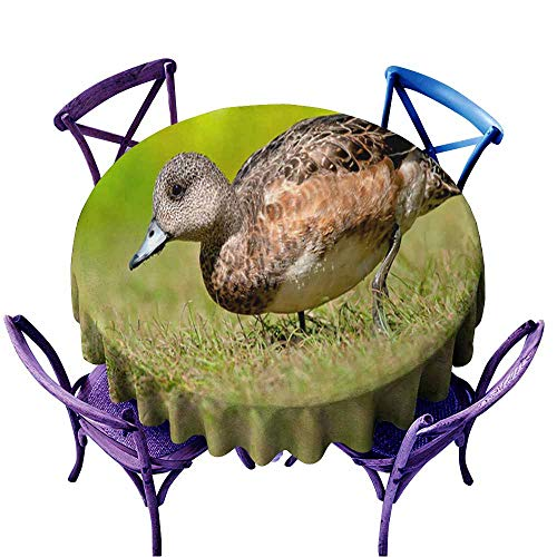 Acelik Indoor/Outdoor Round Tablecloth,American Wigeon,Party Decorations Table Cover Cloth,63 INCH ()