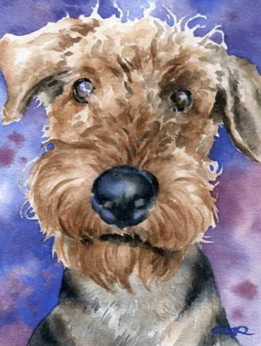 (Airedale Terrier Art Print By Watercolor Artist DJ Rogers)