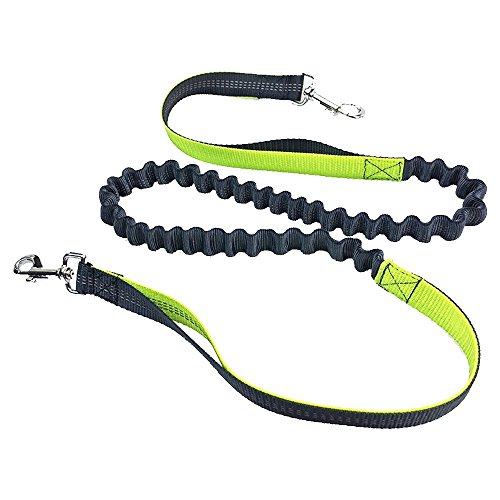 Retractable Hands Free Dog Leash Belt with Dual Handle Bungees, Reflective Adjustable for Running, Jogging and Walking by HIPPIH - Yellow (Fit Up to 42