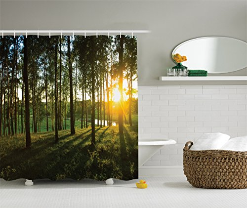 River Birch Leaves (Ambesonne Farm House Decor Collection, Scene of Sunset in the Scattered Woods at Autumn and River Comes into View Print, Polyester Fabric Bathroom Shower Curtain, Olive Green Yellow)