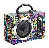 CE-LXYYD M10 Wooden Portable Wireless Bluetooth Speaker, 10H Outdoor Karaoke Player, Wireless Bluetooth 4.1 Playback + Bluetooth Call, Wired and Wireless Microphone,Graffiti