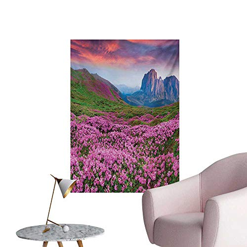 Anzhutwelve Nature Home Decor Wall Colorful Field of Blossom in The Morning Grand Dramatic Mountains Canyon Art PrintPink Green W24 xL32 Art Poster