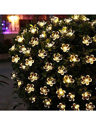 Outdoor Led Flower Lights - 3