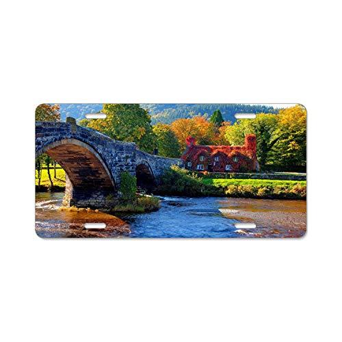 Blue Water Bridge Camera Usa - 9