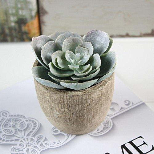 Assorted-Decorative-Faux-Succulent-Artificial-Succulent-Cactus-Fake-Cacti-Plants-with-Gray-Pots-Set-of-5