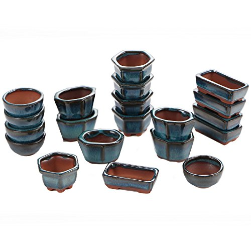 Happy Bonsai 20 Mini Glazed Pots/Small Succulent Plant Flower Planters]()