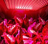 superdream LED Grow Light for Indoor Garden Greenhouse and Hydroponic Full Spectrum Growing Lamps 15W 225pcs Red Light Hanging Light