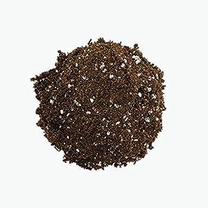 HOLLANDBASICS Premium Sphagnum PEAT Moss Professional Mix for HIGH Porosity with 30% Perlite, MYCORRHIZAE, Balanced PH…