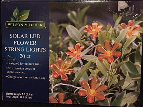 Wilson Fisher Solar Lights - 8