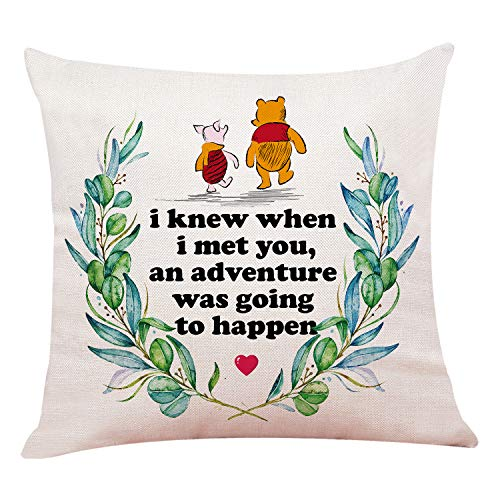 chillake Classic Winnie The Pooh Quotes Pillow Covers - Pooh Pillow Case Cushion Cover for Sofa Couch Decor - Funny Best Friend Friendship Quote Gift (18