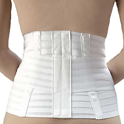 FLA Ventilated Lumbar Support w/Abdominal Belt-XL