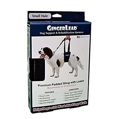 GingerLead Dog Support & Rehabilitation Harnesses - Padded Dog Slings with Integrated Leash for Helping Old, Disabled, or Injured Dogs Walk
