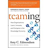 Learning to Team, Teaming to Learn: How the Learning Organization Works
