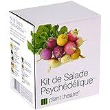Il Kit Ortaggi per un'Insalata Originale di Plant Theatre - 5 fantastiche verdure da insalata da coltivare - ottimo regalo