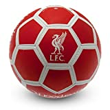 Liverpool FC All Surface Soccer Ball