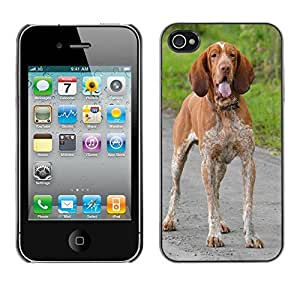 Super Stellar Slim PC Hard Case Cover Skin Armor Shell Protection // M00125762 Dog Dogs Pet Holland Model Outdoor // Apple iPhone 4 4S 4G