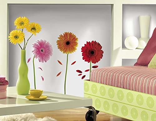 RoomMates: Small Gerber Daisies Peel & Stick Wall (Gerber Daisy Border)