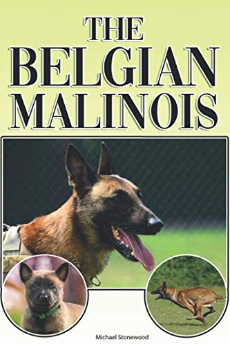 The Belgian Malinois: A Complete and Comprehensive Beginners Guide to: Buying, Owning, Health, Grooming, Training, Obedience, Understanding and Caring for Your Belgian Malinois