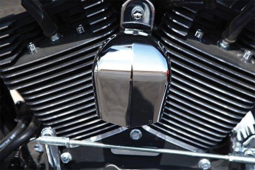 06-16 HARLEY FLHX2: HardDrive Horn Cover (Chrome)
