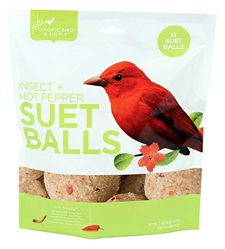 Pacific Bird & Supply Co Insect + Hot Pepper Suet Balls PB-0100 (12 - Ball Make Suet