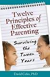 Twelve Principles of Effective Parenting, David Celio, 0809146835