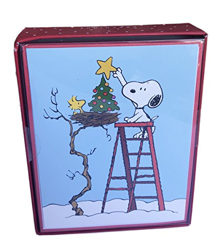 Peanuts Snoopy and Woodstock Box of 15 Holiday Christmas Cards -