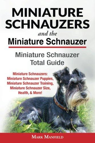 Schnauzer Puppies - Miniature Schnauzers And the Miniature Schnauzer: Miniature Schnauzer Total Guide: Miniature Schnauzers: Miniature Schnauzer Puppies, Miniature ... Miniature Schnauzer Size, Health, & More!