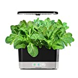 AeroGarden Salad Seed Pod Kit, 6