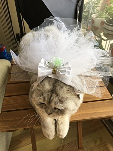 wedding-bridal-veil-mantilla-dog-cat-cap-bow-pet-hat-puppy-lace-princess-hat-clothes-party-costumes