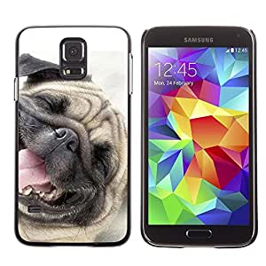 Be Good Phone Accessory // Dura Cáscara cubierta Protectora Caso Carcasa Funda de Protección para Samsung Galaxy S5 SM-G900 // Pug Happy Dog Pet Canine Smiling