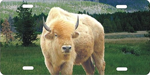 ATD White Buffalo Bison Personalized Novelty Front License Plate Native American Decorative Aluminum Car Tag