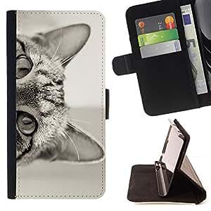 - Queen Pattern FOR Samsung Galaxy S6 /La identificaci????n del cr????dito ranuras para tarjetas tir????n de la caja Cartera de cuero cubie - cat curious cute kitten shorthair bla