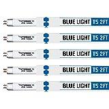 VIVOSUN Grow Lamps 5 Packs 2FT/22IN 6500K T5 Fluorescent Grow Light Bulbs
