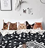 Arightex Funny Cats Body Pillow Cover Animal Kitten Animal Print Long Body Pillowcase Pillow Protectors with Zipper 20''x 54'' (1 Piece)