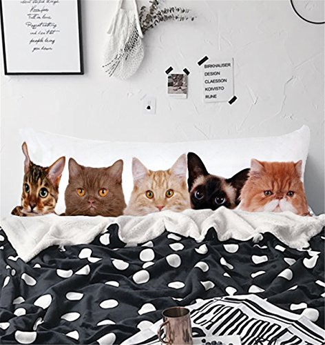 funny cats pillow cover animal